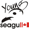 Young Seagull Web Design